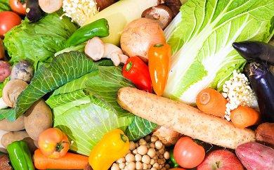 旬を味わう!季節の米・野菜・果物 プレミアム定期便 (年12回)